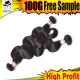 マレーシアの人間の毛髪の拡張組みひもの毛