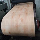 Du grain du bois (décoratifs PPGI pour la décoration d'acier, acier pré-peint, acier revêtu de couleur)