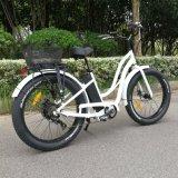 [750و] قوة كبيرة كهربائيّة درّاجة عمليّة ركوب على شاطئ