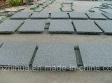 Carrelages de partie supérieure du comptoir de brames de granit noir absolu noir de Shanxi grands