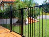 Acier ornemental résidentiel clôturant avec la qualité
