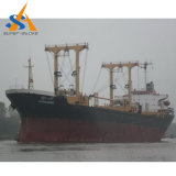 Frachtschiff des Massengutfrachter-55000dwt