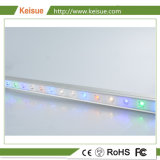 Keisue Poultry Professional LED Light