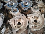 Die 1020 die Aluminium Zoll-Qualitäts-Präzision Druckguß