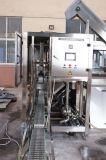 Goede Kwaliteit 600bph het Water dat van 5 Gallon Machine Combi vult