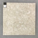 Floor and Wall Tile Style Italien 600x600mm carrelage rustique (TER601)