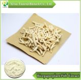 Ricepaperplant Pith Extract 10:1, Powder