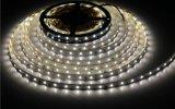 15W 150LEDs wasserdichte SMD2835 LED Seil-Lichter der Hohen-Brightess W/R/G/B Farben-für System-/Markt-/Hotel-Dekoration