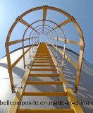 Barandilla de FRP/escala del material/de la fibra de vidrio de construcción/escala del trabajo
