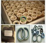 공장 공급 고품질 고무 샤프트 Tc 오일 시일 (NBR/VITON/FKM/PTFE/Silicone)