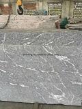 China Preto azeviche Mist Neve laje de granito cinza com nervuras brancas sobre venda