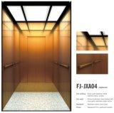 Levage résidentiel d'ascenseur des bons prix de FUJI pour l'usage à la maison