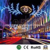 La calle de la luz de la decoración de Navidad