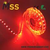 12V DC / DC24V Cinta LED Flexible SMD 5050 TIRA DE LEDS de 5m 60M/LED tiras LED DE 24V