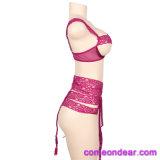 Conjunto de Sujetador bordado Señoras sexy Net conjuntos de sujetador sexy Bra Panty Set