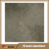 De Tegels van uitstekende kwaliteit in 60X60cm Fabrikant (FT60004)