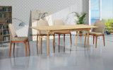 Домашняя мебель дизайн прямоугольник деревянный стол,