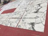 Естественный каменный сляб Bianco Arabascata белый мраморный для плиток