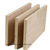 pegamento de la base E1 del álamo de la madera contrachapada del roble del gradiente de 9m m C/D