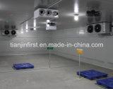 Constructeurs de chambre froide, entreposage au froid pour fait en Chine