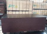 le film de faisceau de peuplier de 18X1220X2440mm Brown a fait face au contre-plaqué pour la construction