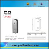 Morsetto di vetro dell'acciaio inossidabile per vetro Co-3920