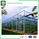 냉각 장치를 가진 농업 또는 광고 방송 또는 정원 유리제 온실