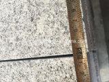 Bush ha martellato il pavimento non tappezzato G603 che pavimenta la strada privata/patio/giardino delle mattonelle che pavimenta le mattonelle