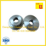 Standaard transportband Tooth Double Chain Sprocket