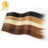 18, 20, 22, 24inch 100% Haar van Remi van de Uitbreiding van het Haar van de Huid Weft, de Kleur 40/20PCS van de Blonde van de Uitbreiding van het Haar van de Band #613 plaatsen 9 Kleuren