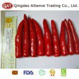 /poivron rouge congelé/frais normal avec de bonne qualité