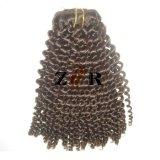 Het kroezige Haar van de Krul van de Braziliaanse Weefsels van het Menselijke Haar