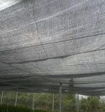Rete di sicurezza lavorata a maglia del gommino di protezione, reticolato piano dello schermo del filamento dell'HDPE