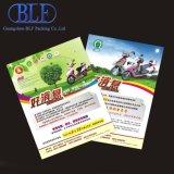 Складные буклет печать (BLF-F034)
