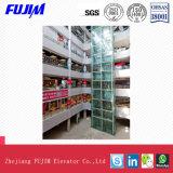 Innenbesichtigenhöhenruder für Einkaufszentrum mit äußerem Glasdeckel