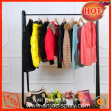 Cremalheiras de indicador da roupa de forma do boutique