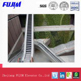 35 Degré Escalator de plein air avec des prix concurrentiels