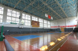 Construction préfabriquée de structure métallique pour le terrain de basket (KXD-SSB22)