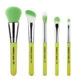 5pcs maquillaje profesional Brush set (HERRAMIENTA-11)