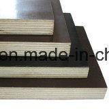 La madera contrachapada/la película hechas frente película negra de Brown hizo frente a la madera contrachapada
