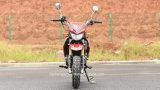 110cc Mini Moto Pocket Dirt Bike Kawasaki Racing Motocicleta (KSR)