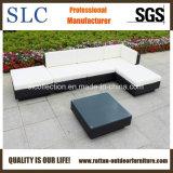藤のソファーセットまたは熱い藤のソファーまたは優雅な屋外のソファーはセットした(SC-B7018-B)