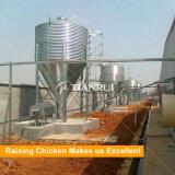 Kanal bewirtschaftend, konzipierte Geflügel-Hühnerfutter-Silo für Geflügel-Gerät