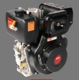 Motore diesel (CE diplomato)