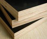 El uso de la construcción película de 25 milímetros hizo frente a la madera contrachapada