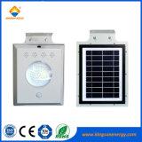 lumière solaire de jardin de 5W DEL avec l'homologation de RoHS de la CE