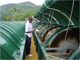 Abwasser-Behandlung-Gerät für Umweltschutz
