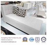 Muebles de encargo del hotel para el salón de la calesa de la sala de estar (QT-M-08)
