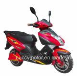 motorino elettrico dell'aquila di 1000W 1500W 2000W Panama Cuba Unico Aguila Ava (CCE8)