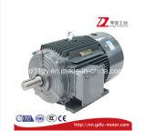 Мотор электрической индукции высокой эффективности низкого напряжения тока серии Сименс Beide